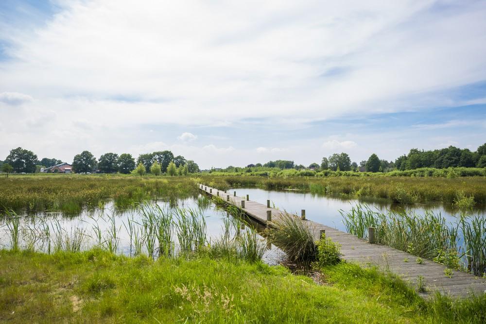 Landduin_Het Buitenhuys (2)